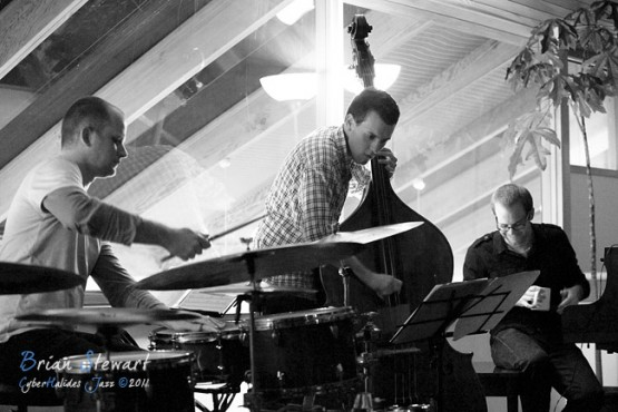 Steve Barry Trio - (D700_6908)