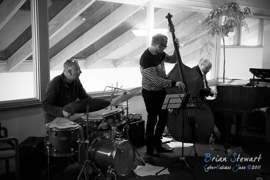 Wayne Kelly Trio - (D700_6416)